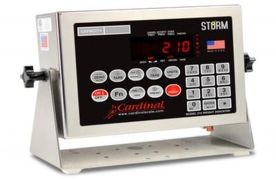 Cardinal 210 Storm Image